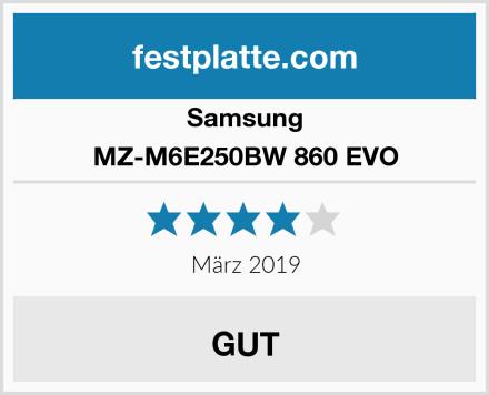 Samsung MZ-M6E250BW 860 EVO Test