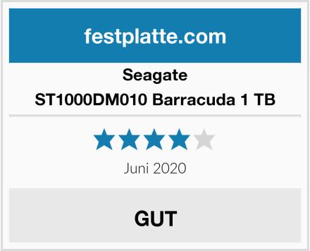 Seagate ST1000DM010 Barracuda 1 TB Test
