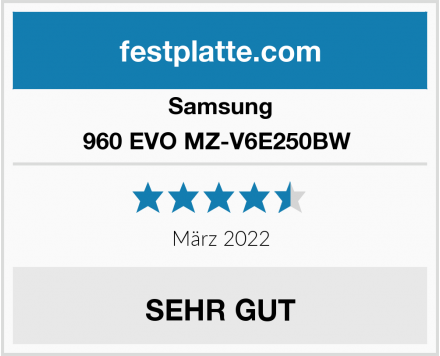 Samsung 960 EVO MZ-V6E250BW  Test