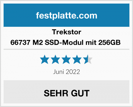 Trekstor 66737 M2 SSD-Modul mit 256GB  Test
