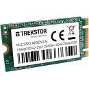 Trekstor 66737 M2 SSD-Modul mit 256GB